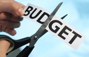 BudgetCut